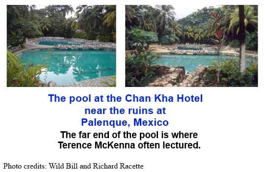 The pool at the Chan Kha Hotel near the ruins at Palenque, Mexico. The far end of the pool is where Terence Mckenna often lectured.